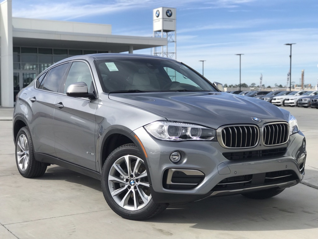 New 2019 BMW X6 sDrive35i